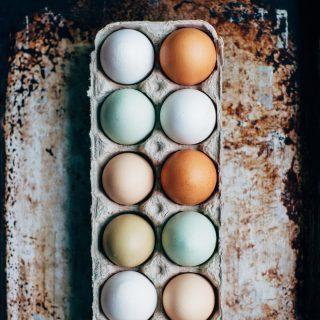 Hoeveel eieren heb je al gegeten? Geniet nog van deze Tweede Paasdag!  #komtvoordebakker #bakker #bakkervanroon #bakkerij #brood #broodbakken #patisserie #bakken #delft #gebak #contactloosbrood #samenwerking #ambachtelijk #weetwatjekoopt #versbrood #samensterk #winkel #online